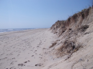 The dunes and ocean on the ocean side of the island.