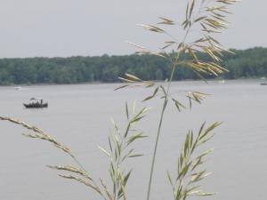 Berlin lake, Ohio 008